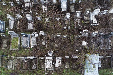 Панорами єврейського цвинтаря